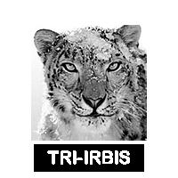 TRI-IRBIS.fw